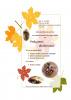 podzimní skřítkování